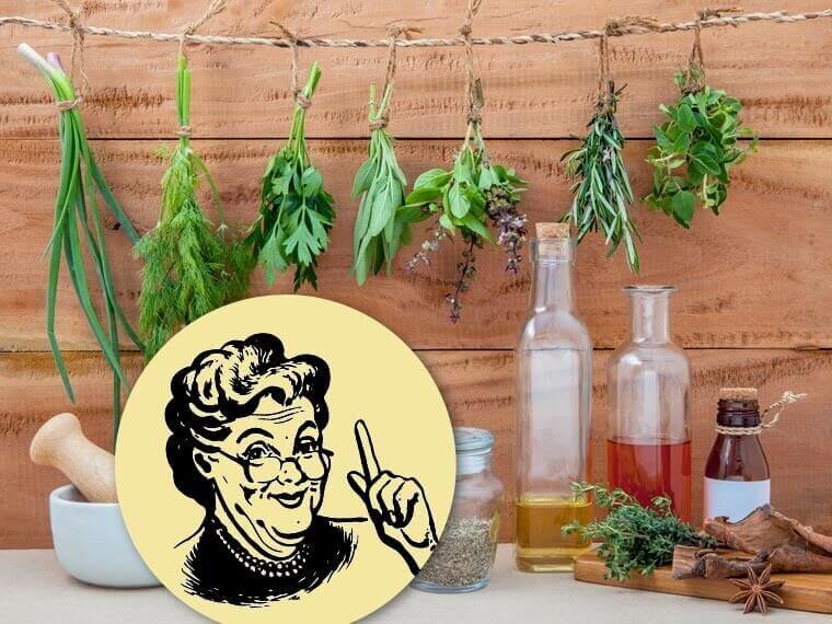 Grandmas' recipes (Photo: ecowoman.de)