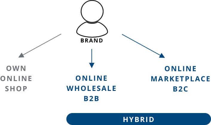 wholesale marketplace hybrid business