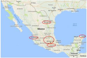 Brand Distribution Mexico Map (Map data ©2017 Google, INEGI