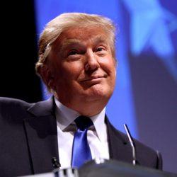 Donald Trump, Trump Retail, Photo: Wikimedia Commons
