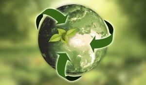 brand retail management sustainability
